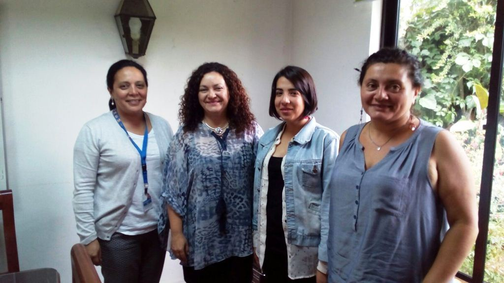 Onemi e Integra participan en reunión de prevención en caso de emergencias en zonas costeras.