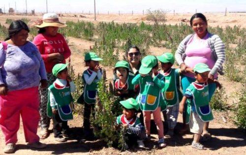 Jardín Sobre Ruedas explora la flora y fauna del Tamarugal