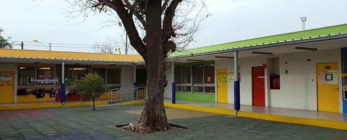 """""""Un Quillay en mi jardín"""", mi experiencia en Fundación Integra"""
