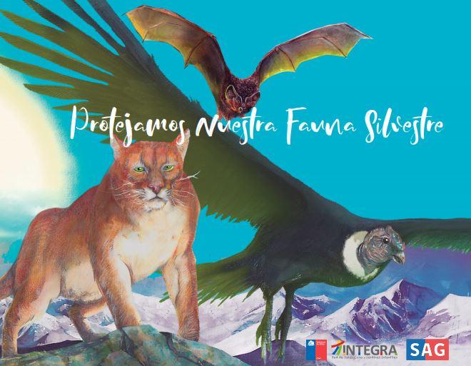portada_protejamos_nuestra_fauna_silvestre